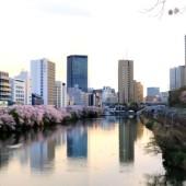 飯田橋 牛込濠の春の風景