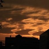 珍しい雲 「波状雲」 夜明けの空に!